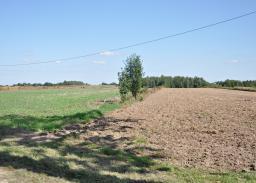 Istniejąca droga krajowa DK 19/74. Miejsce planowanego przebiegu drogi ekspresowej S19.